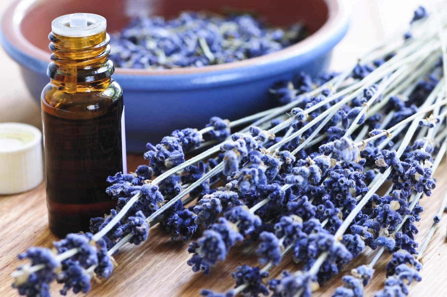 Lavender Essential Oils For Aromatherapy Massage At Le Petit Sanctuary, Taunton