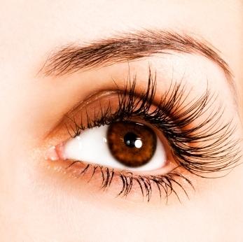 Eyebrows & Eyelashes